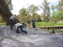 first-planting-oval-bridge-oct-04