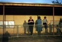 Spectators at Violet Town Football clubrooms