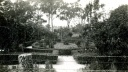 Brown Homestead Garden, Earlston. 1930s