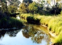 Sheep Pen Creek, Gowangardie.