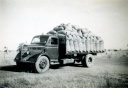 Truck loaded with bagged oats. Caniambo. 1950s
