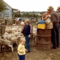 Lamb marking at Lynfield Caniambo